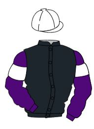 Racing colours for MR SANDY SEYMOUR